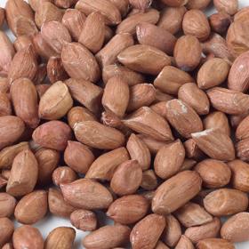 Vine House Farm Peanuts