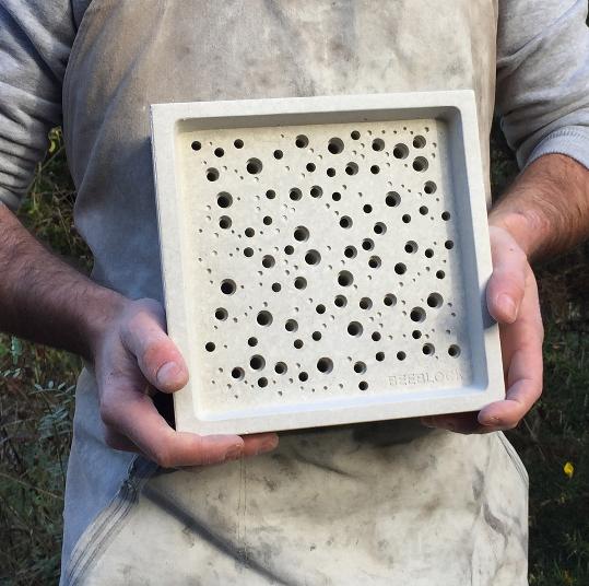 Bee Bricks & Homes