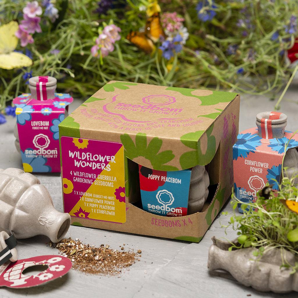 Wildflower Wonders Seedbom Gift Box Yorkshire Wildlife