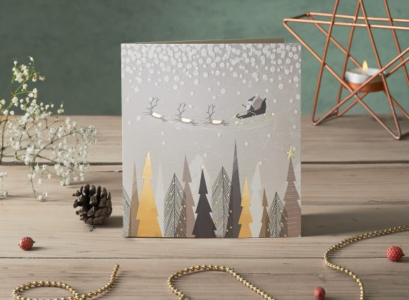 Wildlife Trust Christmas Cards