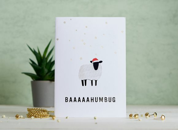 Wildlife Trust Christmas Cards