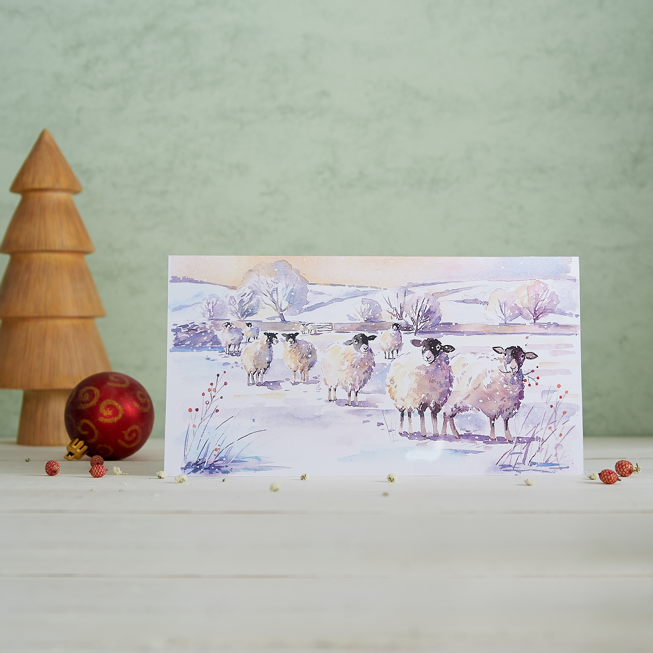 Wildlife Christmas Cards.Yorkshire Wildlife Trust Christmas Cards Frost Meadow