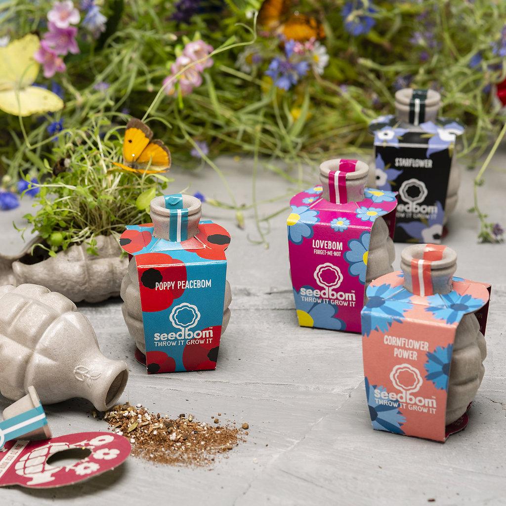 Wildlife Wonders Seedbom Gift Box