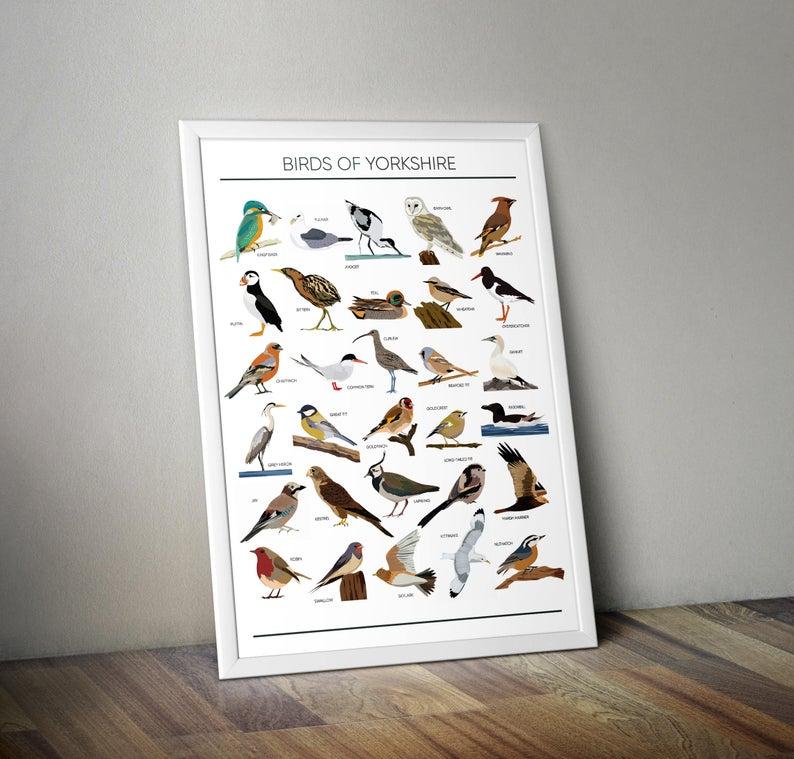 Birds of Yorkshire A4 Print Micklegate Design