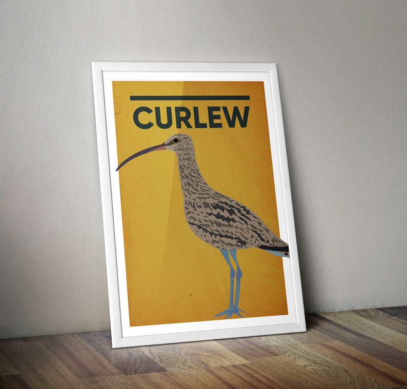 Curlew A4 Print Micklegate Design