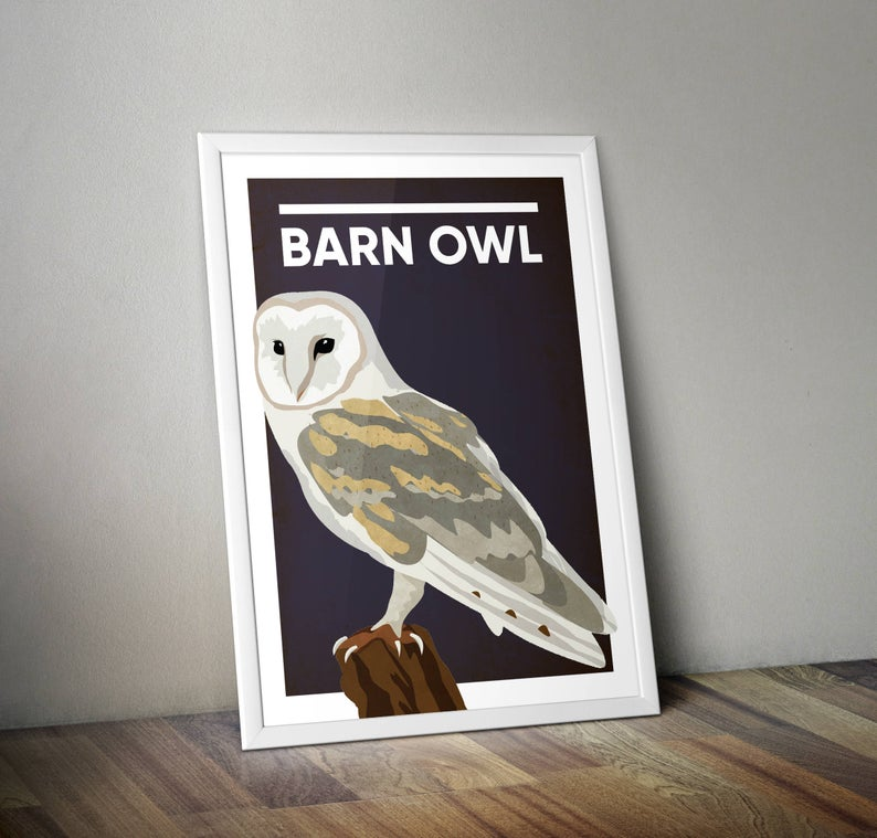 Barn Owl A4 Print Micklegate Design