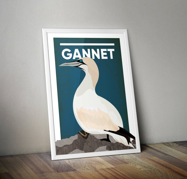 Gannet A4 Print Micklegate Design