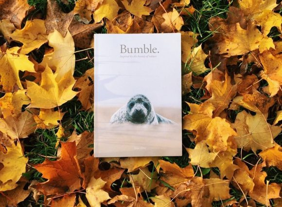 Bumble Issue 3